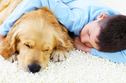 Cute boy embracing his lovely dog. Sleeping together at home.