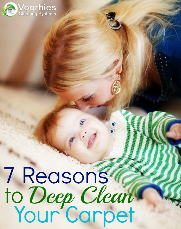 7 Reasons to Deep Clean Your Carpet by Voorhies Carpet Cleaning
