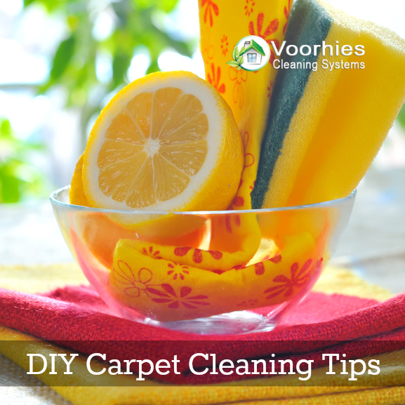 DIY Carpet Cleaning Tips from Voorhies Carpet Cleaning in Kansas City
