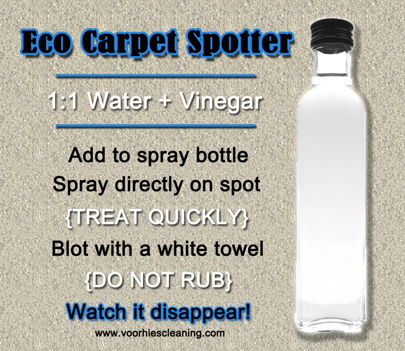 Diy Carpet Spot Cleaning Trick With White Vinegar